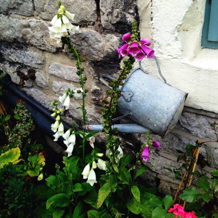 Cottage Gardens in Castleton