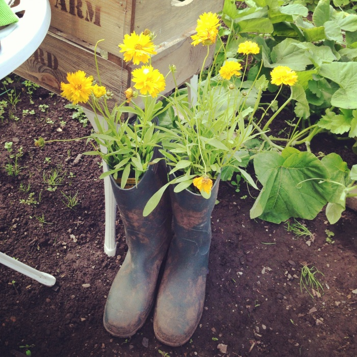 Stew's wellies with happy yellow flowers