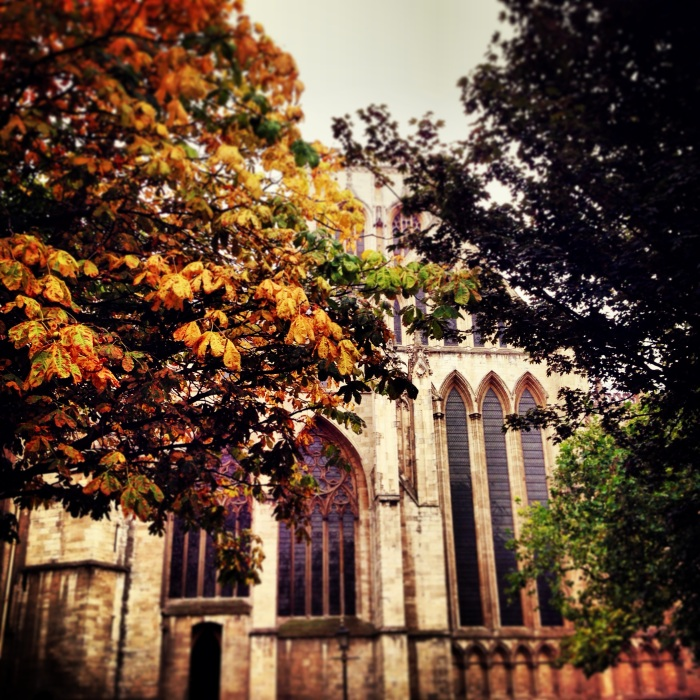 Tones of Autumn in the Minster Gardens