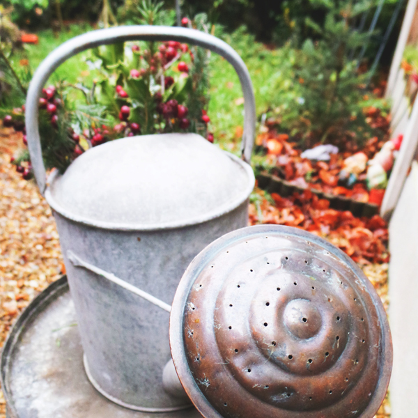 Retired Watering Can