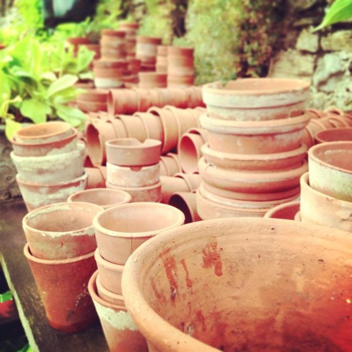 Potty about Pots