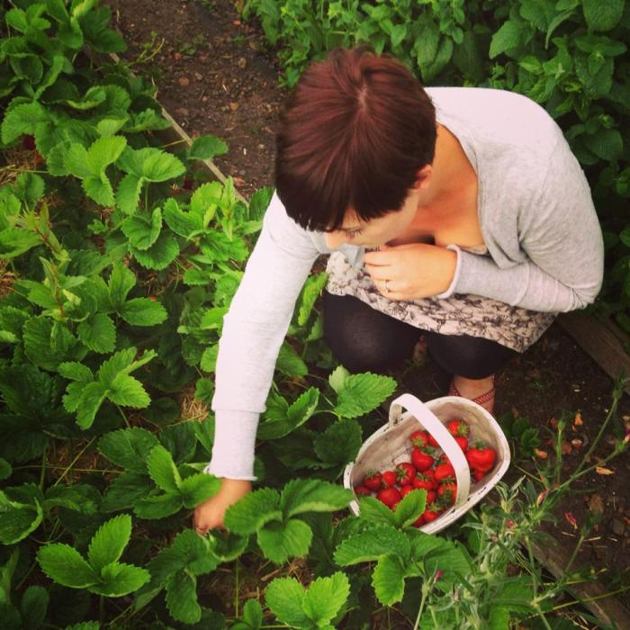 Digging for strawbs