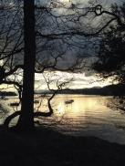 Bowness
