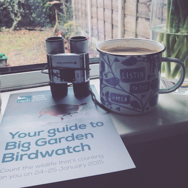 Big Garden Bird Watch 2015