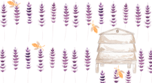 Feature Image Lavender & Bees