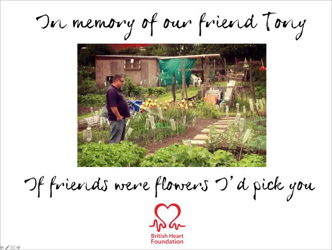 In Memory Of Tony