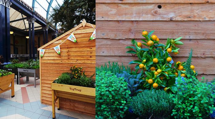 The Edible Garden Show Ticket Booth