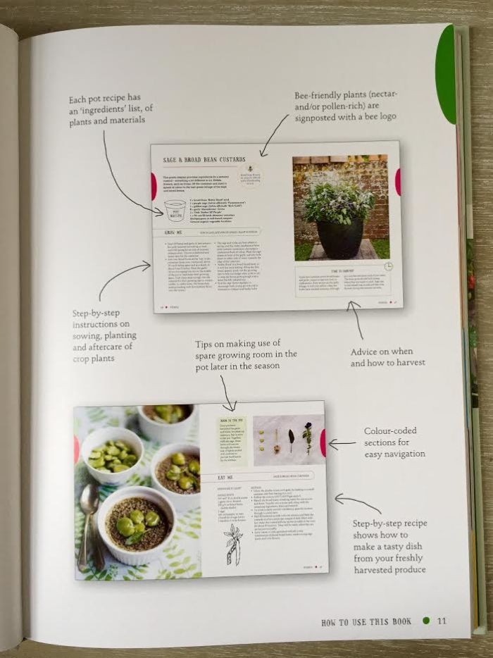 The One-Pot Gourmet Gardener by Cinead McTernan1