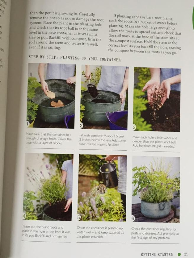 The One-Pot Gourmet Gardener by Cinead McTernan2