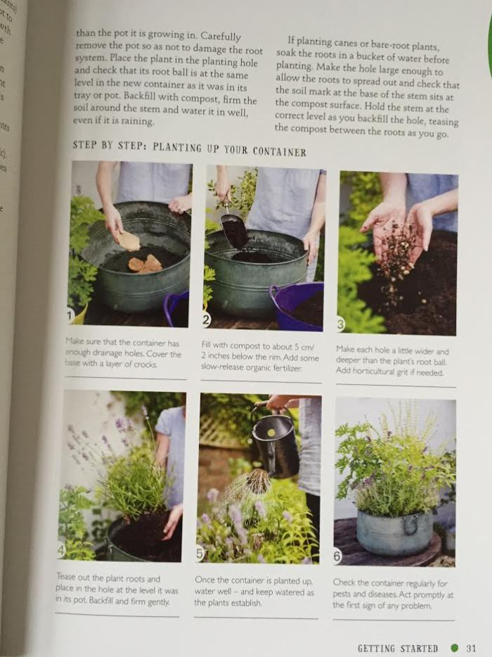 The One-Pot Gourmet Gardener by Cinead McTernan2