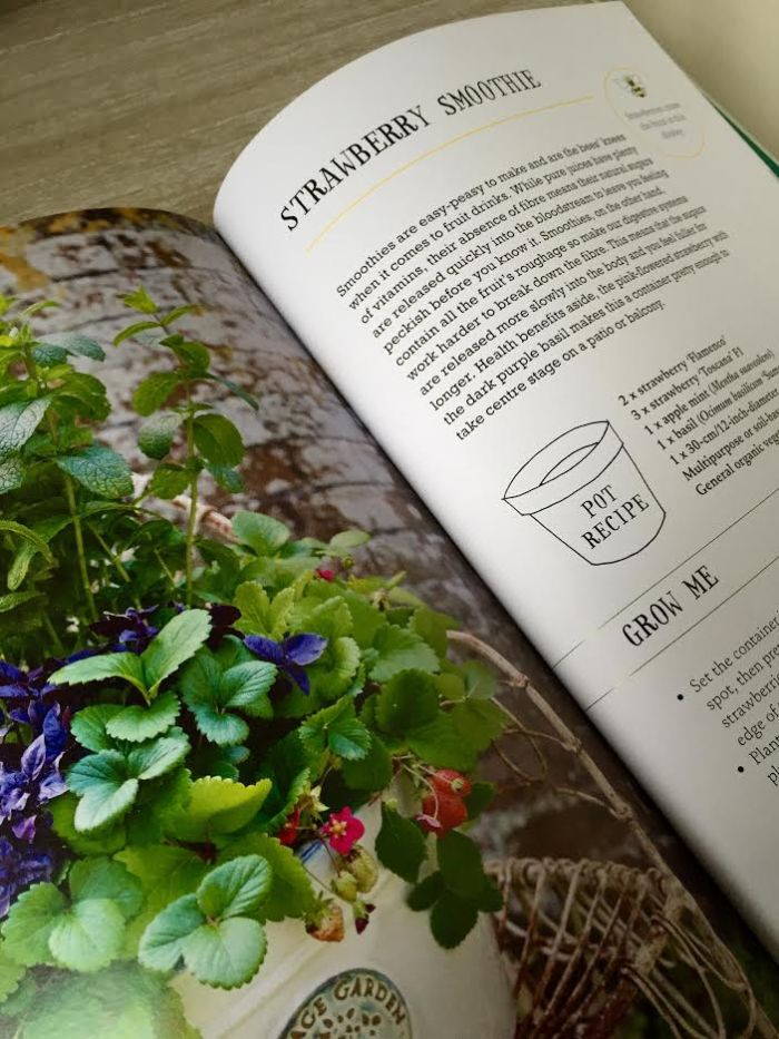 The One-Pot Gourmet Gardener by Cinead McTernan3
