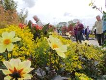Holker Garden Festival | Exploring the show gardens