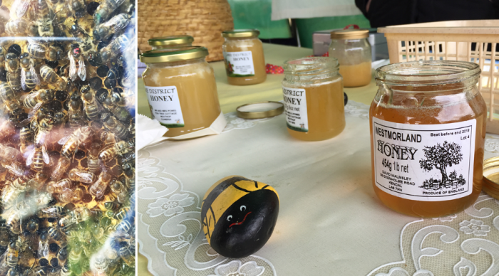 Holker Garden Festival | Furnace Beekeepers AssociationObservation Hive & Honey Tasting
