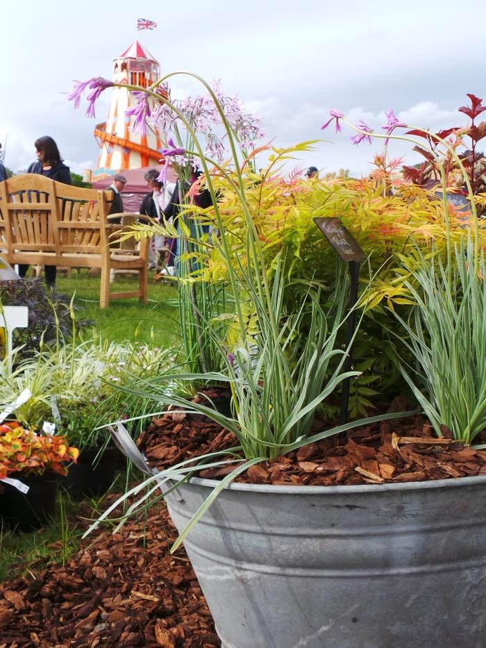 Holker Garden Festival | Inspiring planters