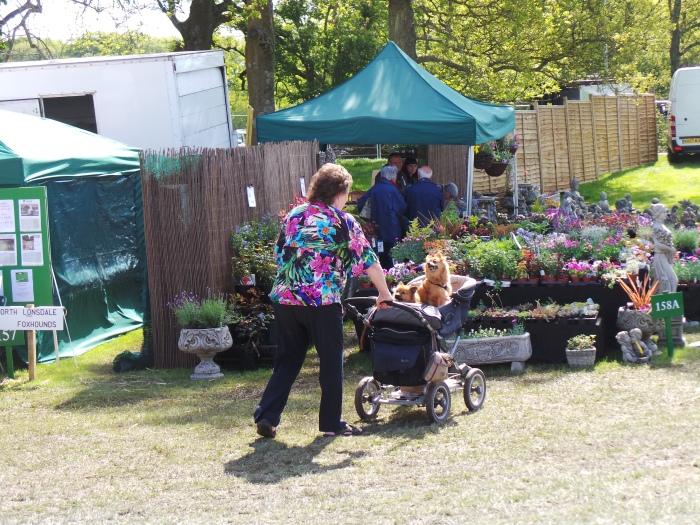 Holker Garden Festival | Pampered pooches
